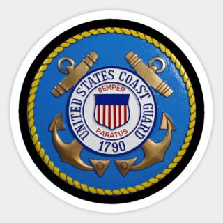 Patrouilleur de la U.S. Coast Guard : le CAPE GULL 35274611