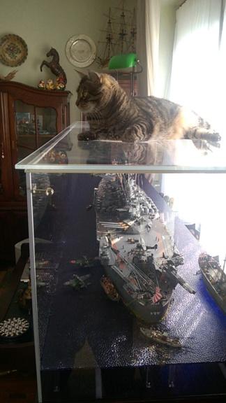 Yamato, un jour de janvier 1945 Modèle RC au 1/150 dans sa vitrine d'exposition - Page 3 Wp_20239