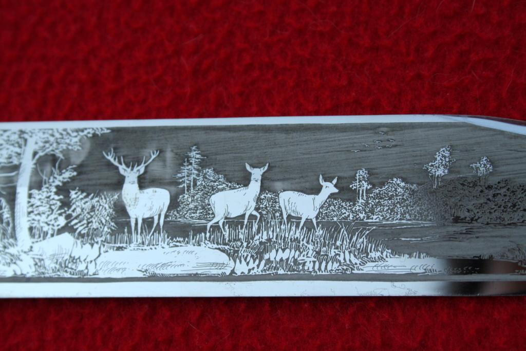 dague de garde forestier allemande Img_8824