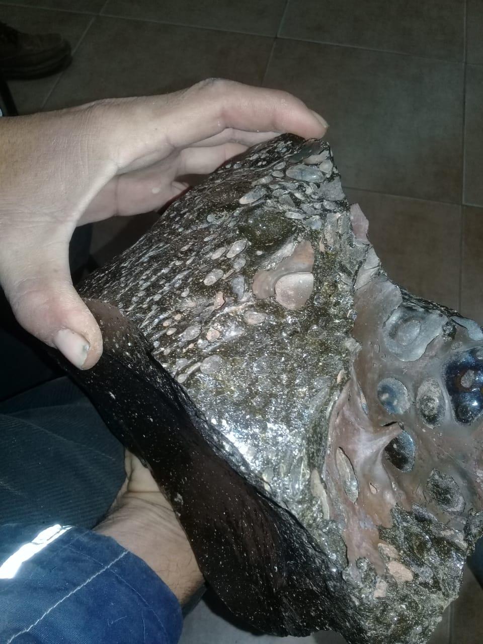 Lodranite NWA 10368 Meteor12