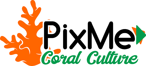 About PixMe Coral Culture and our stock Logo_c10