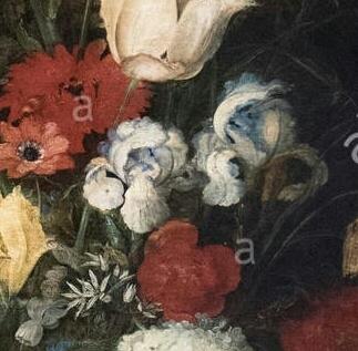 Iris plicata en peinture Bruegh10