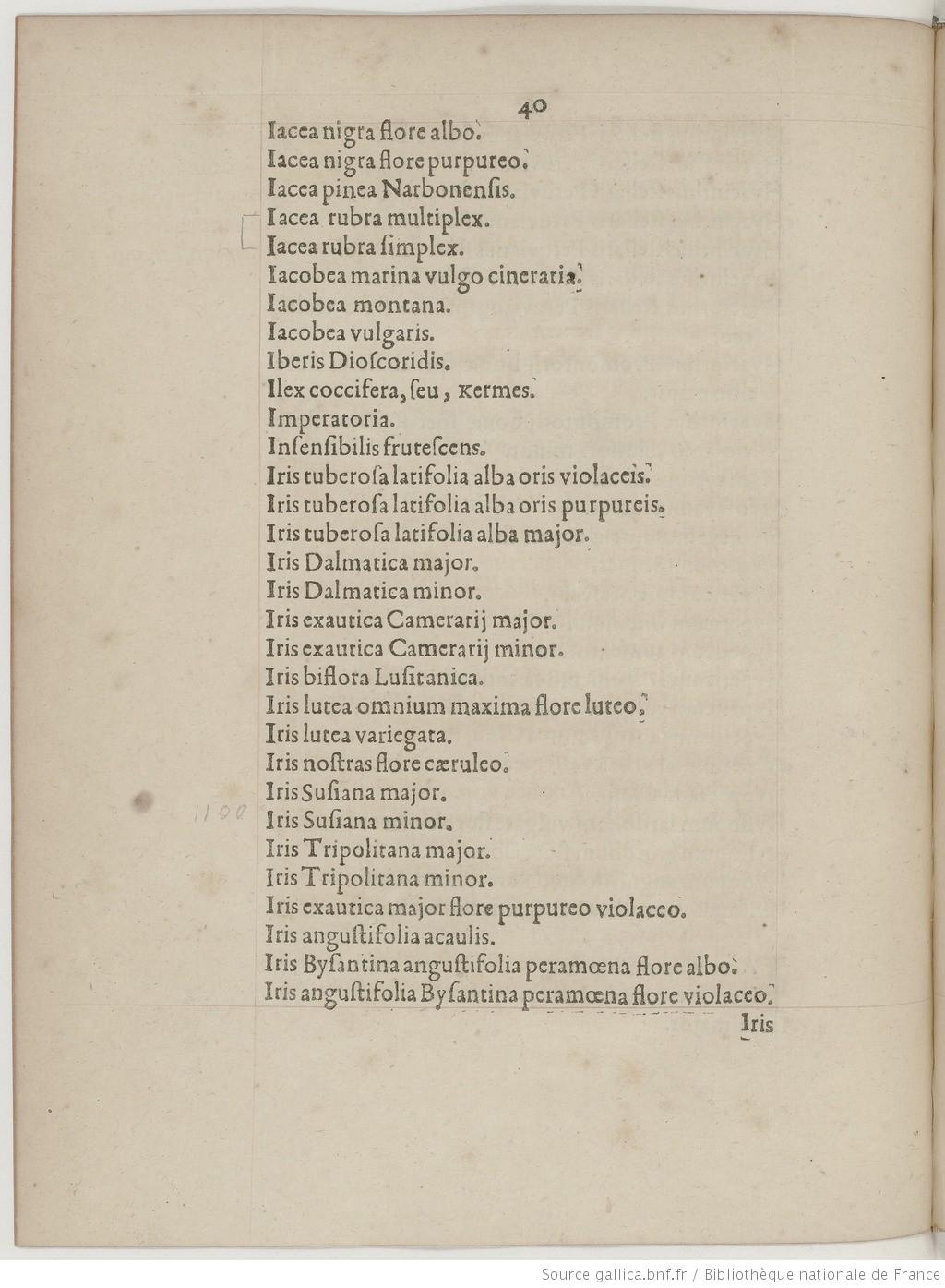 Vélins du XVIIe s. Catalo12