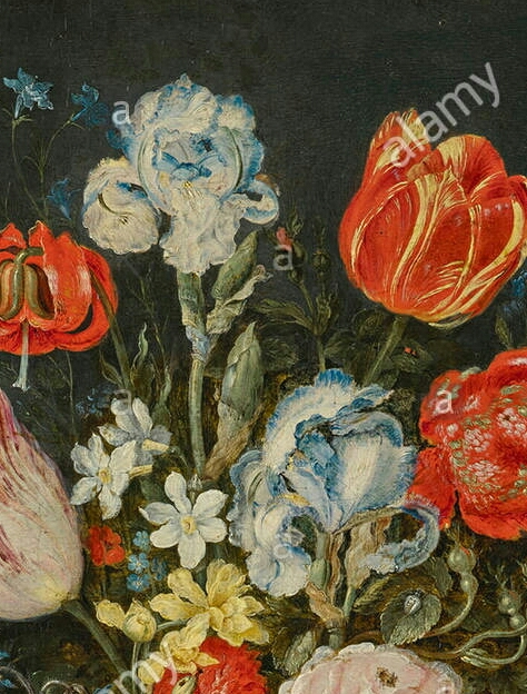 Iris plicata en peinture Jan_br11