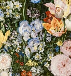 Iris plicata en peinture Jan_br12