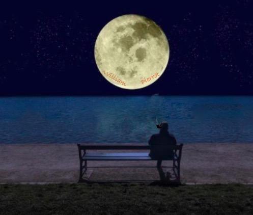 J'ai acheté la lune!. Illustration par Brase d'Anjou Lune10