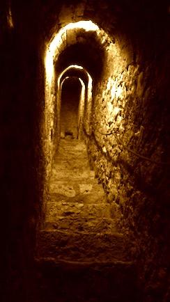 Tiens voilà du boudin!   31   Illustration Brase d'Anjou Tunnel10