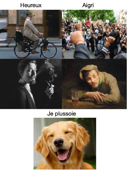 je l'ai lu à mon chien Illustration pour partie extraites de l'image de Brase d'Anjou Ze_mon10