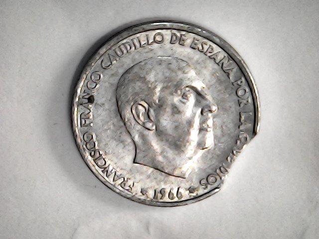 En serio ¿las monedas se aparean? Sat_oc22