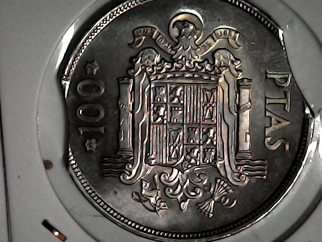 monedón XXL doble segmentada Tue_no11
