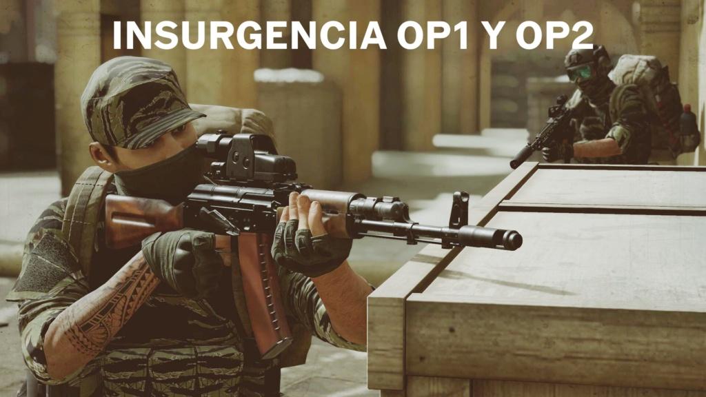 Insurgencia OP-1 y OP-2 10/04/2021 y 11/04/2021 Ae88d810