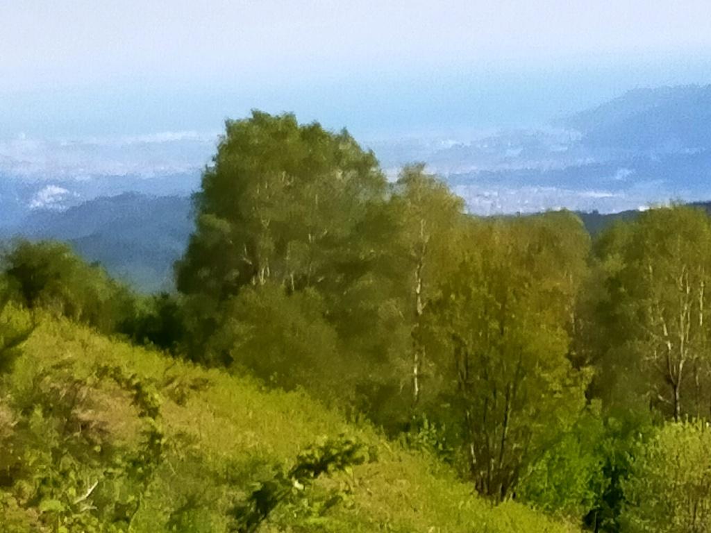 Tour in Liguria Img20233