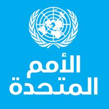 الأمم المتحدة: خطط الإصلاح في التعليم المصري «قصة رائدة» Oaoa_210