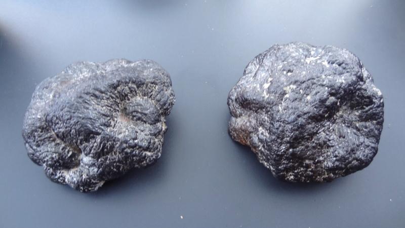 Météorite ou terrestre  Dsc03010