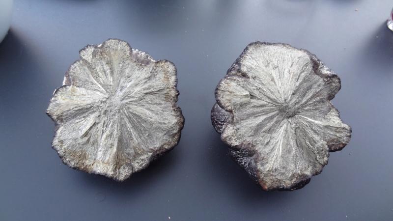 Météorite ou terrestre  Dsc03011
