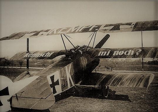 [Eduard] 1/48  Fokker DR. 1  Dr1_2110