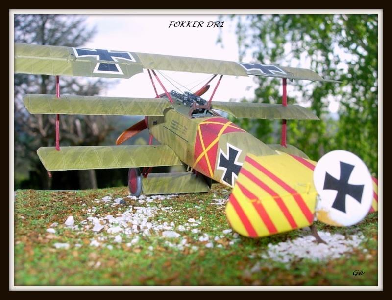 peinture brossée de Fokker Dr.I Dscn0110