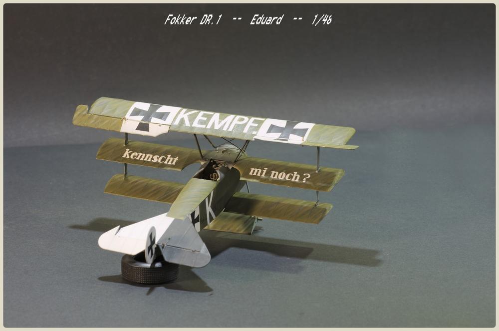 [Eduard] 1/48  Fokker DR. 1  Imgp9105