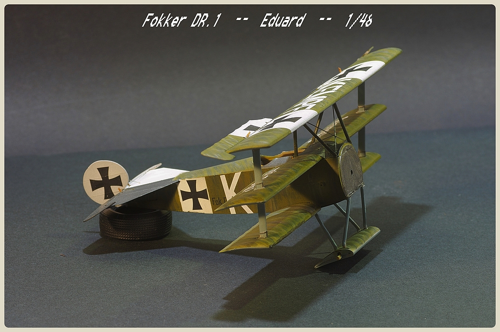 [Eduard] 1/48  Fokker DR. 1  Imgp9106