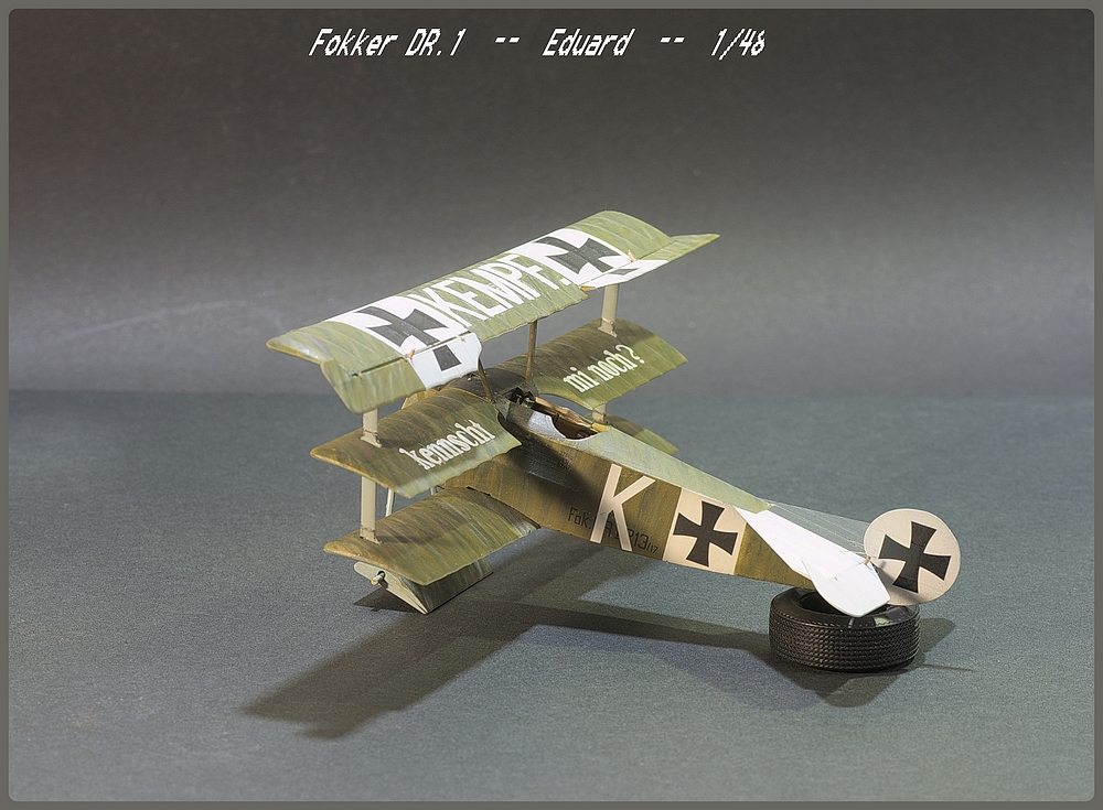 [Eduard] 1/48  Fokker DR. 1  Imgp9107