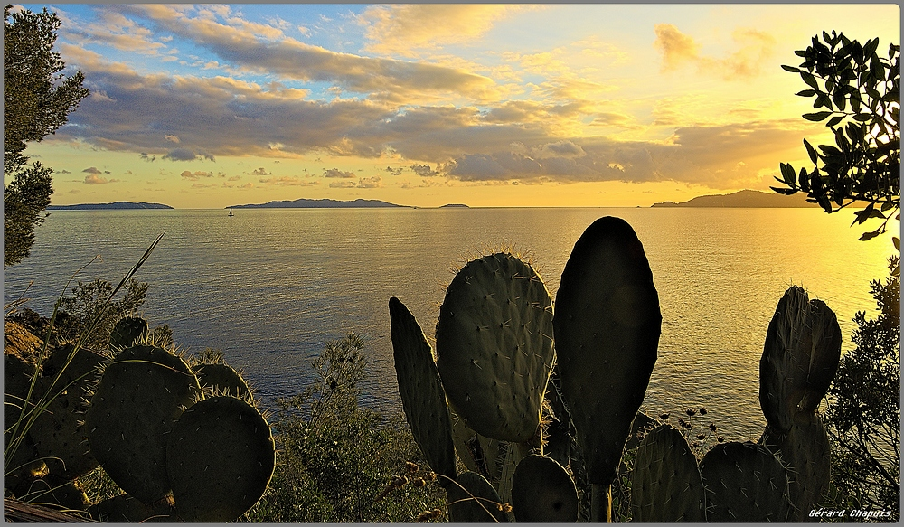 Les Îles du Levant Imgp9315