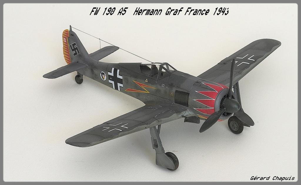 [Eduard] FW 190 A5 Hermann Graf 1/72 Imgp9513
