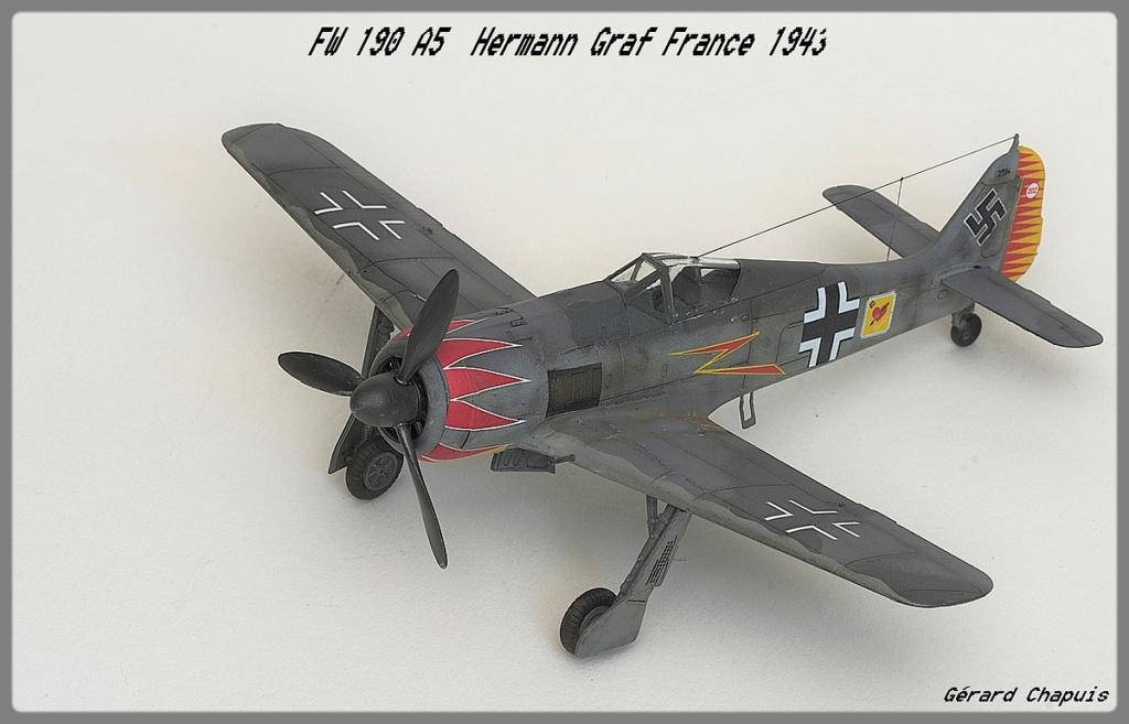 [Eduard] FW 190 A5 Hermann Graf 1/72 Imgp9514