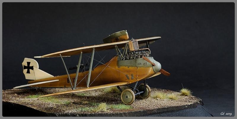 Lloyd C.V. 1917 Imgp9727