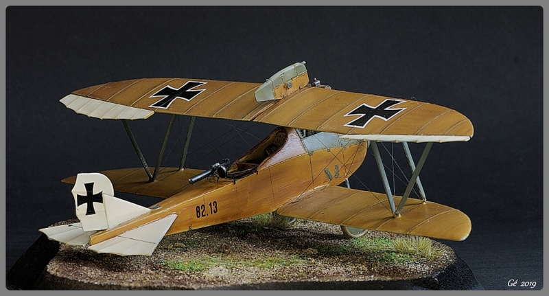 Lloyd C.V. 1917 Imgp9730