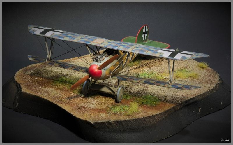 Albatros D.Va Imgp9838