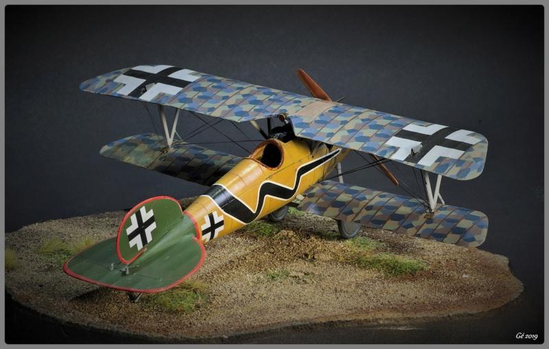 Albatros D.Va Imgp9839