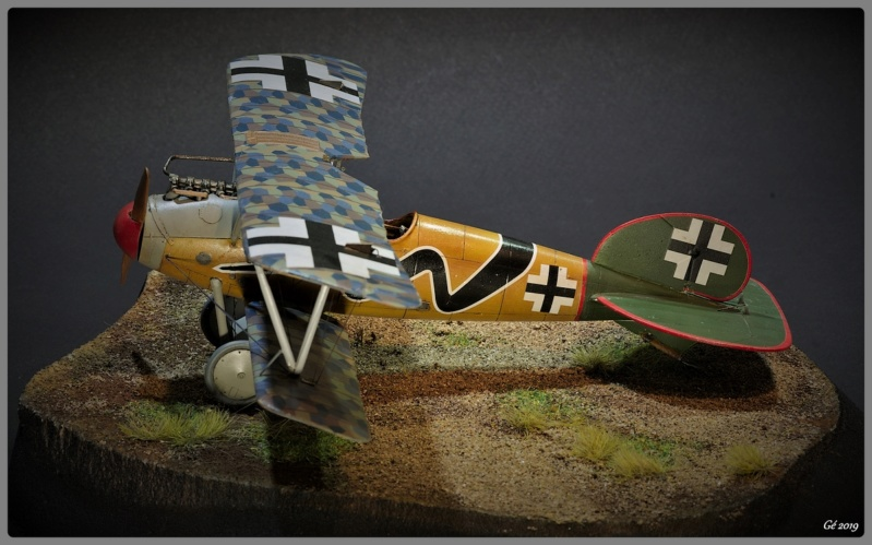 Albatros D.Va Imgp9840