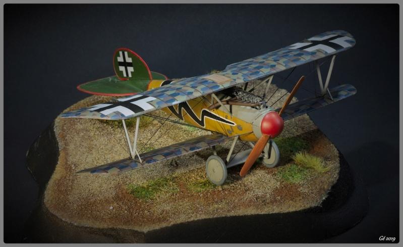 Albatros D.Va Imgp9841