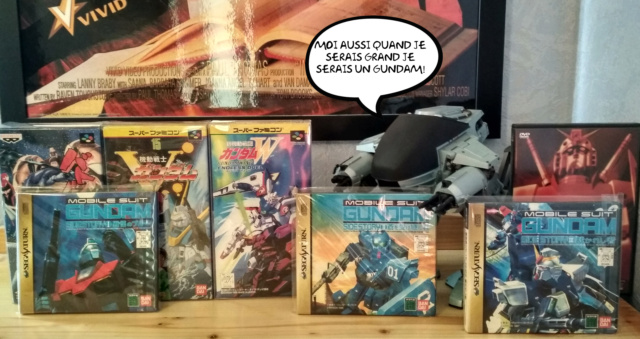 Gundam vs Macross Img_2979