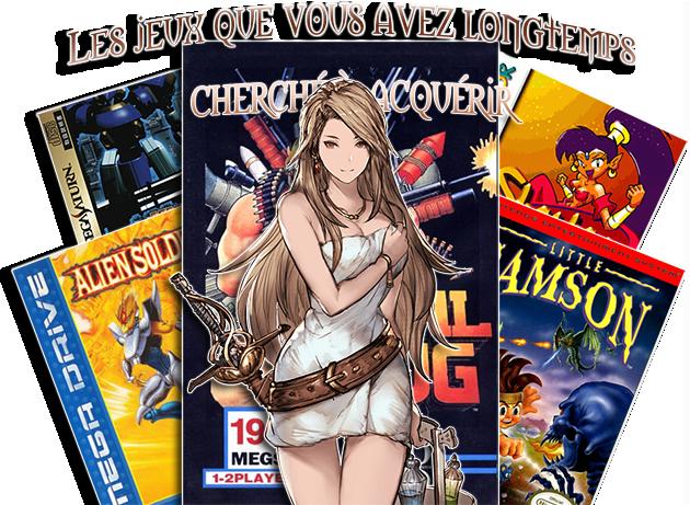Les jeux que vous avez longtemps cherché à acquérir Les_je10
