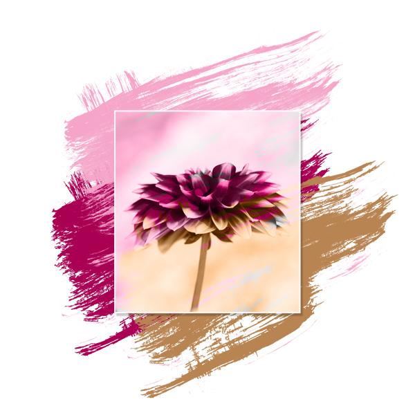 2019-11 / Challenge C&S des Invités : De la légèreté et de l'aquarelle - Page 3 Brush_11