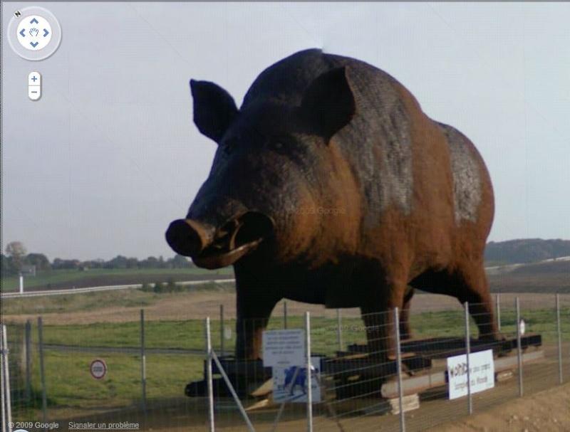 STREET VIEW : Les statues d'animaux dans le monde Woinic10