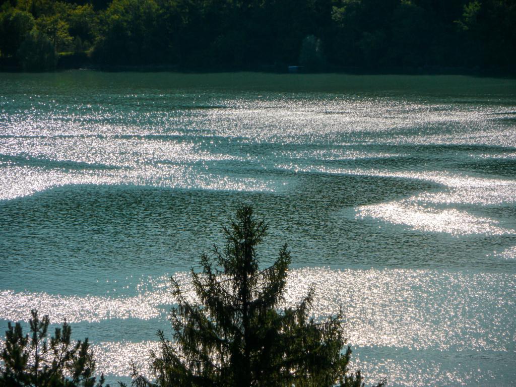 C. Bord de Lac Lac_de11