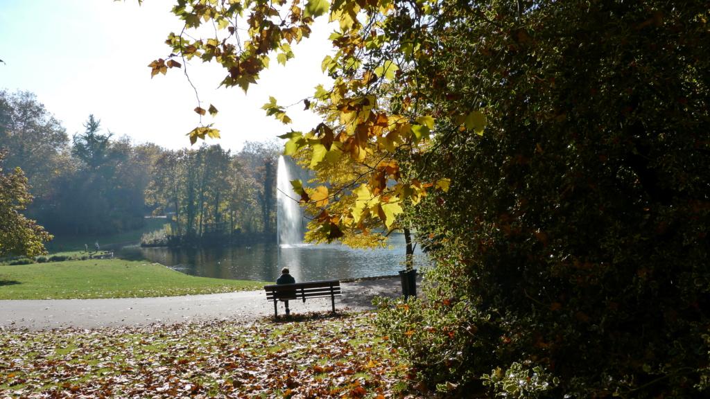 C. Automne au Parc Parc_b10