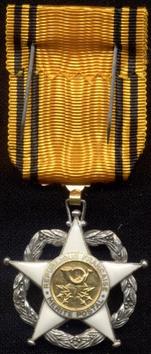 Mes médailles Mzorit11