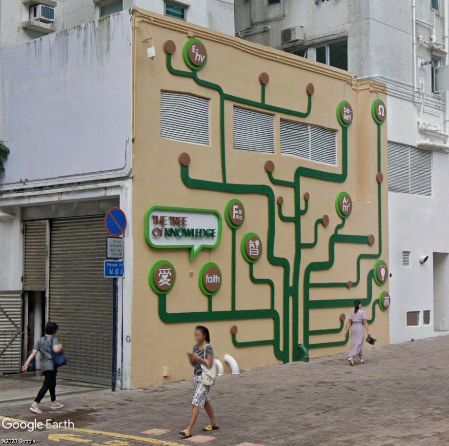 L'arbre de la connaissance Arbre10