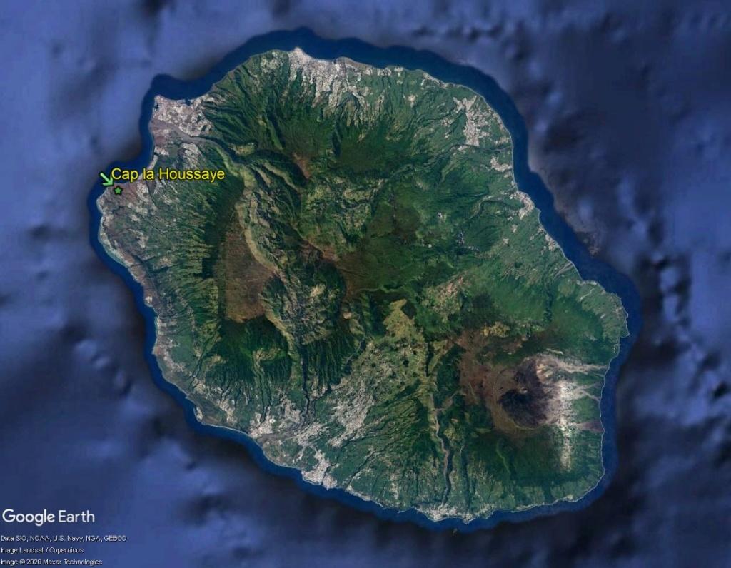 Végétation de la Réunion Cap_la10