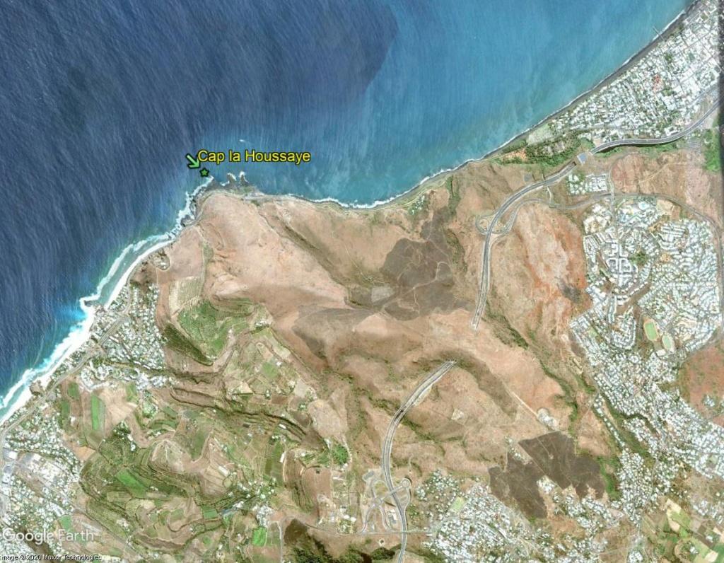 Végétation de la Réunion Cap_la11