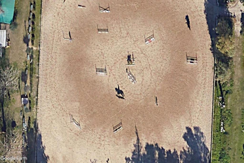 Chevaux à l'entrainement à l'Hippodrome de Naples Cx510