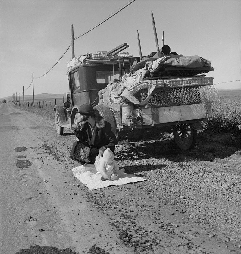 Le projet Shelterbelt (Great Plains Shelterbelt) : projet pharaonique pour lutter contre le Dust Bowl Doroth10