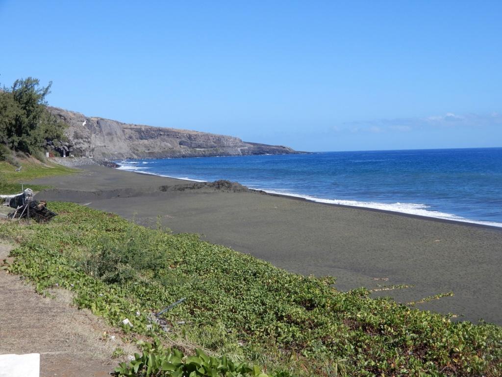 Végétation de la Réunion Dscn2511