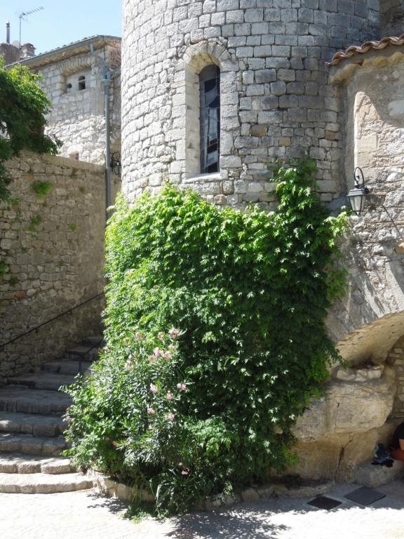 Les Plus Beaux Villages de France - Page 2 Dscn6414