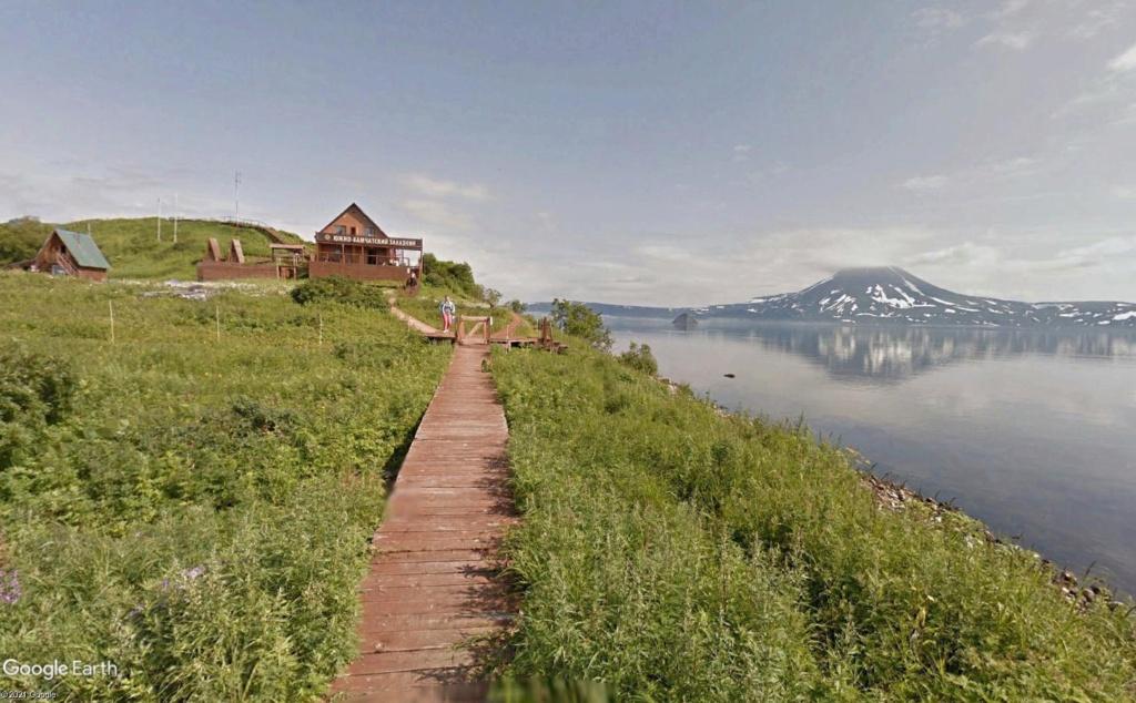 Ours (et saumons) dans le Kamtchatka Dud110