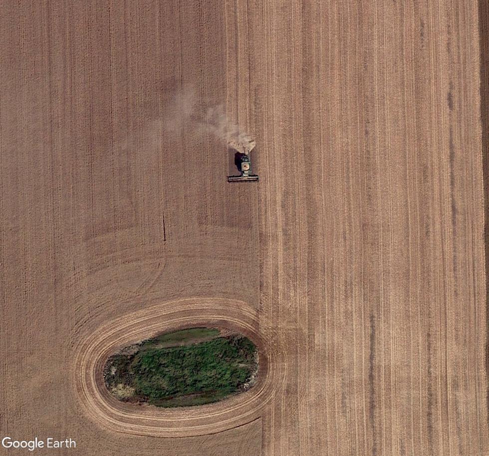 Travaux agricoles Fergus12