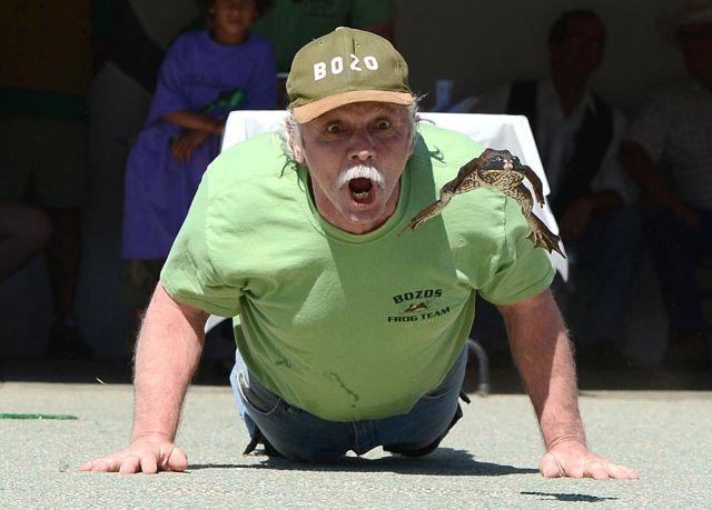 Les grenouilles d'Angels Camp (Mark Twain) Funny_10